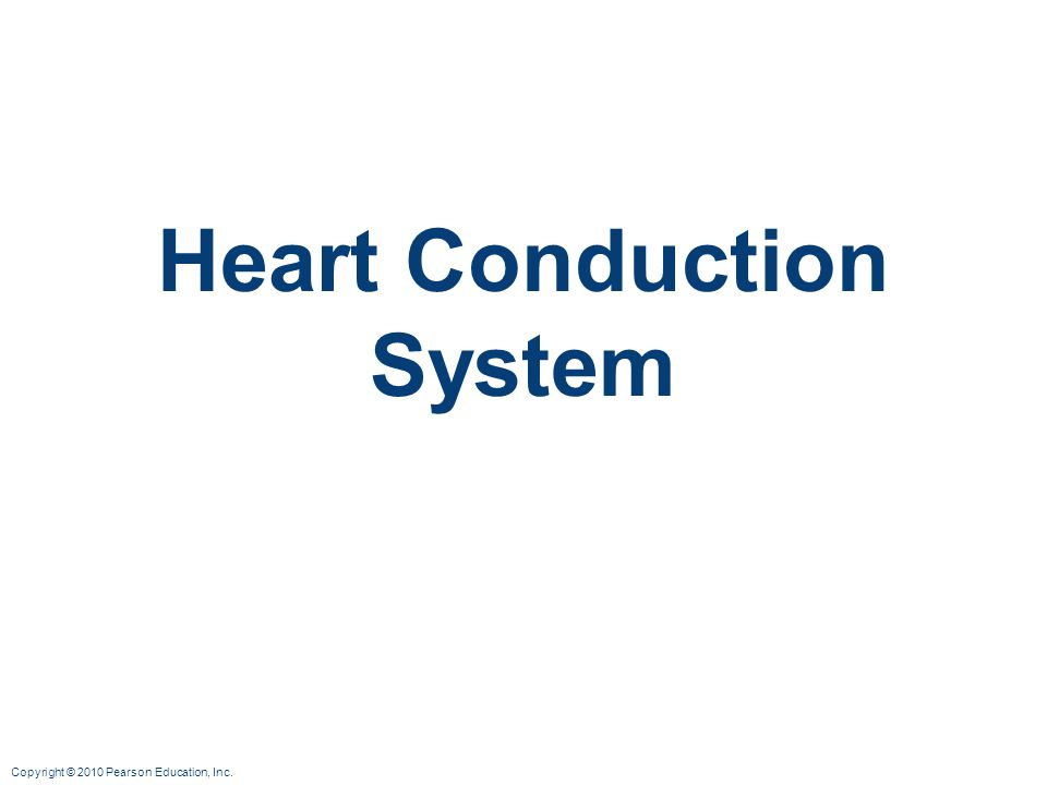 Copyright © 2010 Pearson Education, Inc. Heart Conduction System