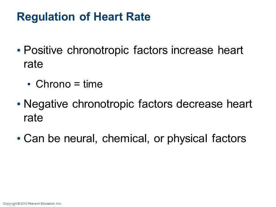 Copyright © 2010 Pearson Education, Inc. Regulation of Heart Rate Positive chronotropic factors increase heart rate Chrono = time Negative chronotropi