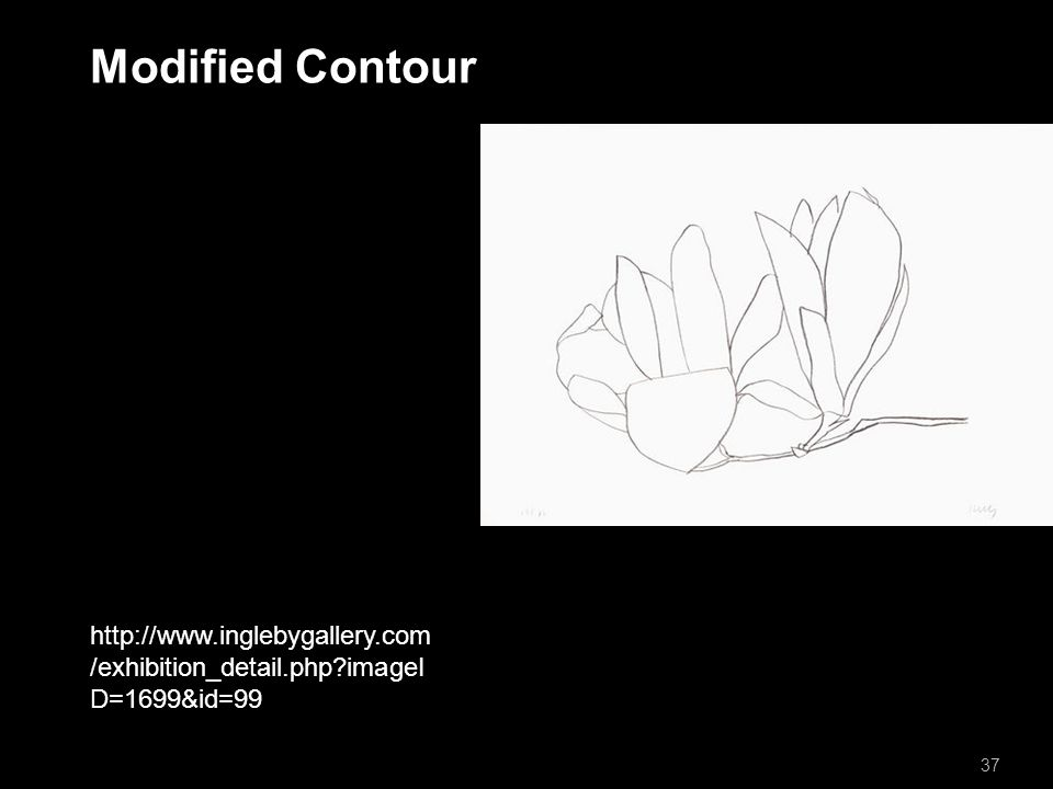 Modified Contour 37   /exhibition_detail.php imageI D=1699&id=99