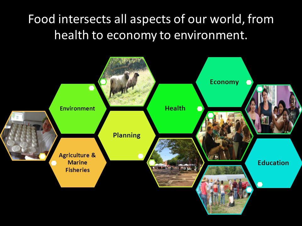 Food intersects all aspects of our world, from health to economy to environment. Agriculture & Marine Fisheries Planning Environment HealthEconomyEduc