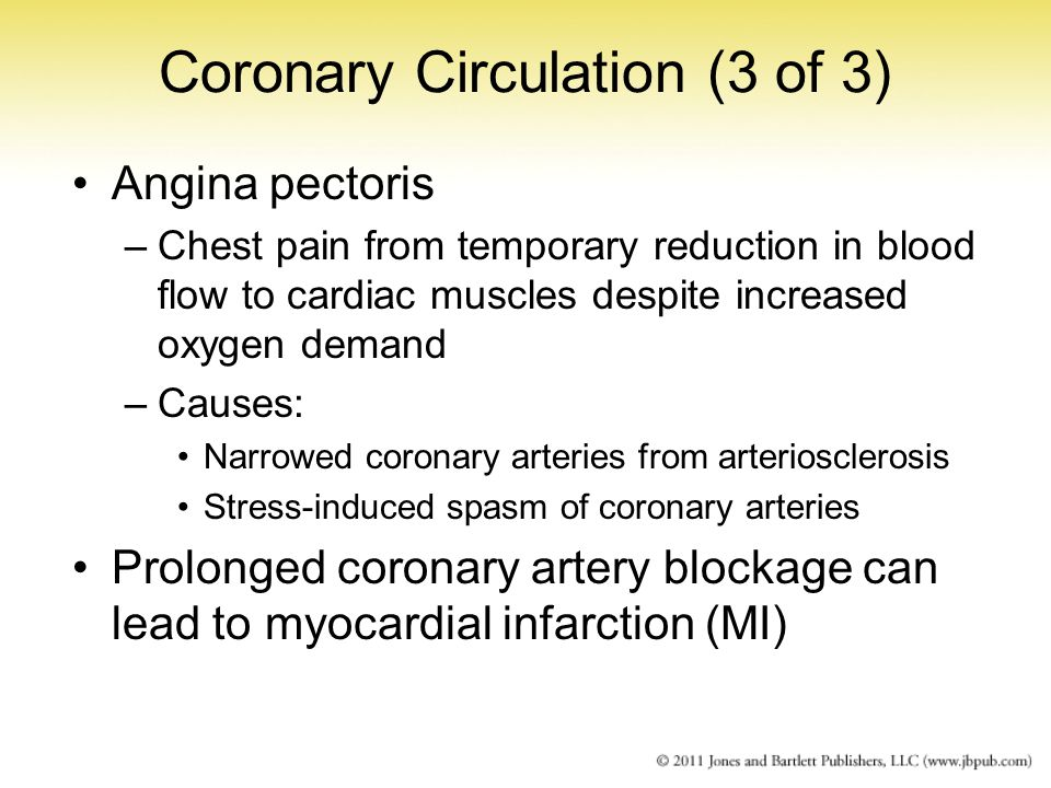 Coronary Circulation (3 of 3) Angina pectoris –Chest pain from temporary reduction in blood flow to cardiac muscles despite increased oxygen demand –C