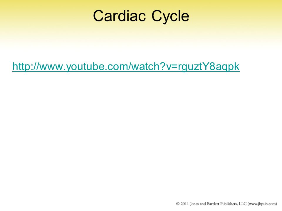 Cardiac Cycle http://www.youtube.com/watch?v=rguztY8aqpk
