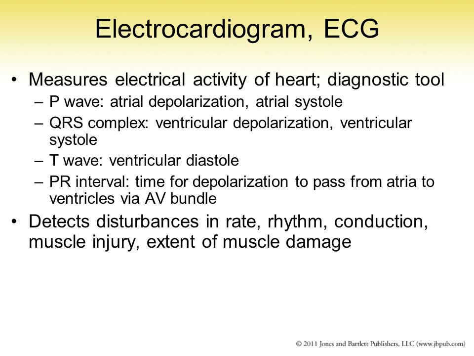 Electrocardiogram, ECG Measures electrical activity of heart; diagnostic tool –P wave: atrial depolarization, atrial systole –QRS complex: ventricular