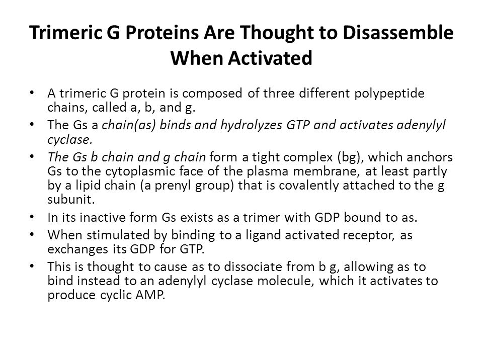 Trimeric G Proteins Are Thought to Disassemble When Activated A trimeric G protein is composed of three different polypeptide chains, called a, b, and g.