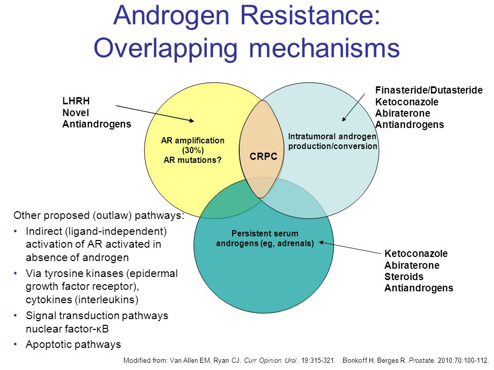 Androgen Resistance: Overlapping mechanisms Other proposed (outlaw) pathways: Indirect (ligand-independent) activation of AR activated in absence of androgen Via tyrosine kinases (epidermal growth factor receptor), cytokines (interleukins) Signal transduction pathways nuclear factor-κB Apoptotic pathways LHRH Novel Antiandrogens AR amplification (30%) AR mutations.