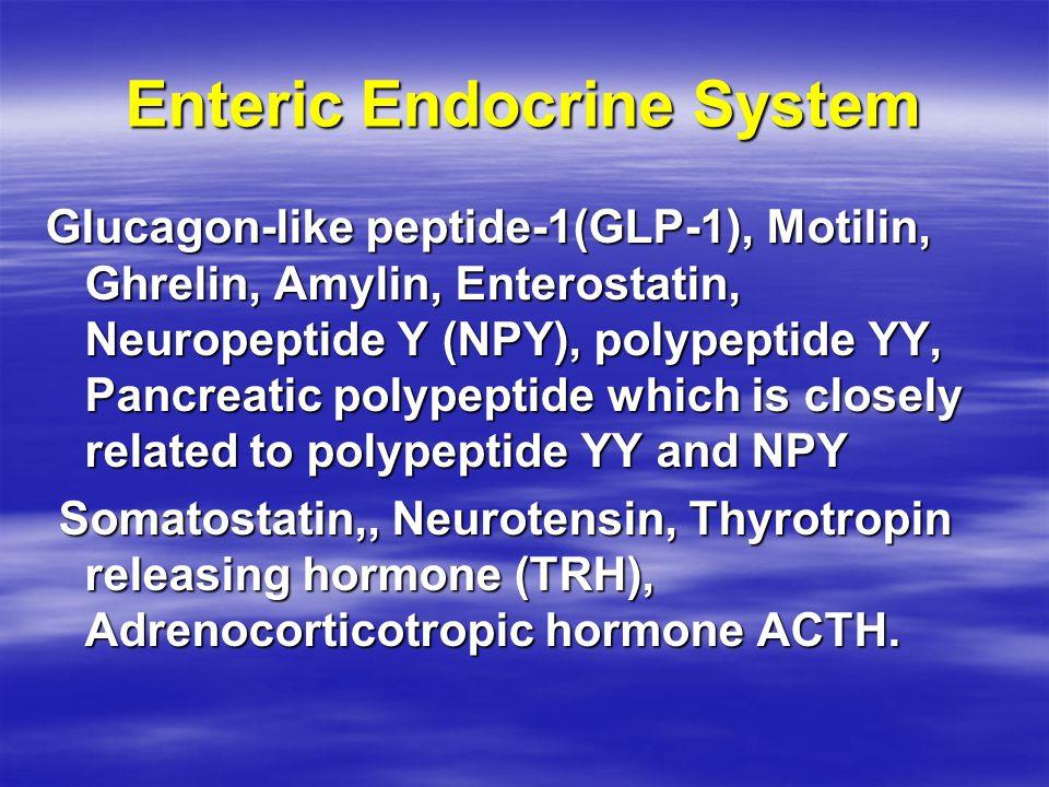 Enteric Endocrine System Glucagon-like peptide-1(GLP-1), Motilin, Ghrelin, Amylin, Enterostatin, Neuropeptide Y (NPY), polypeptide YY, Pancreatic poly