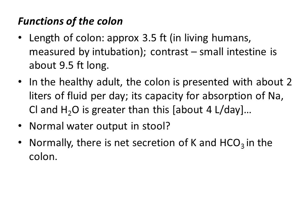 Functions of the colon Length of colon: approx 3.5 ft (in living humans, measured by intubation); contrast – small intestine is about 9.5 ft long. In