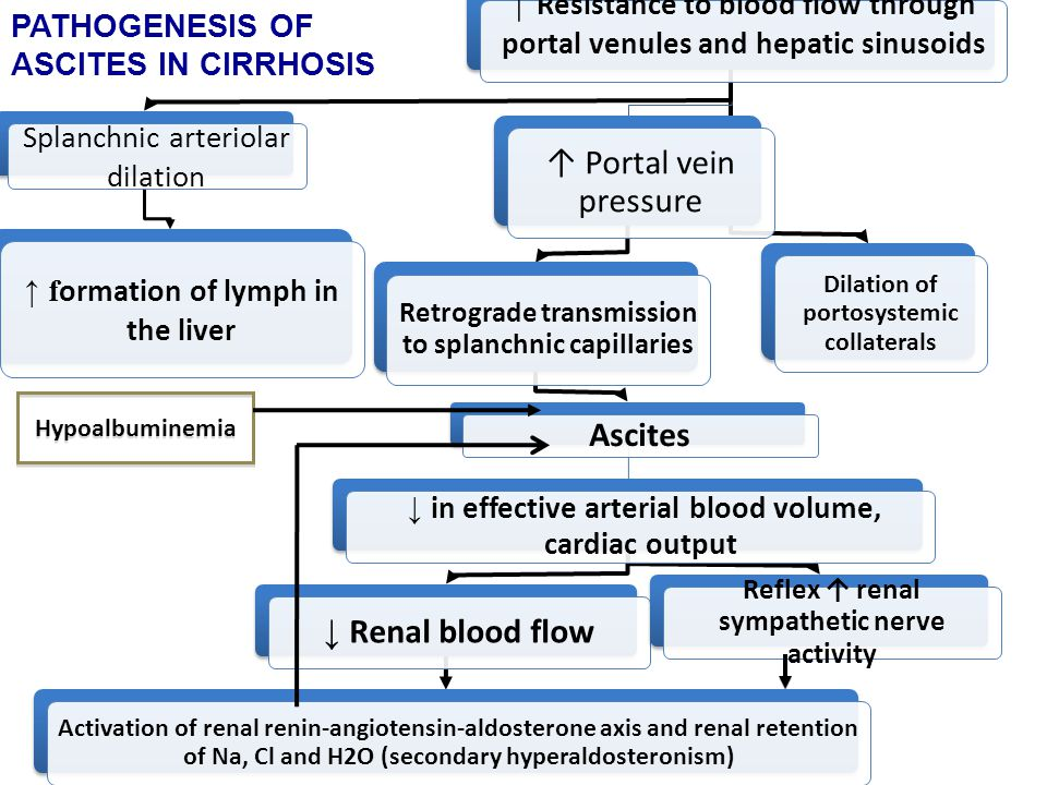 Hypoalbuminemia PATHOGENESIS OF ASCITES IN CIRRHOSIS