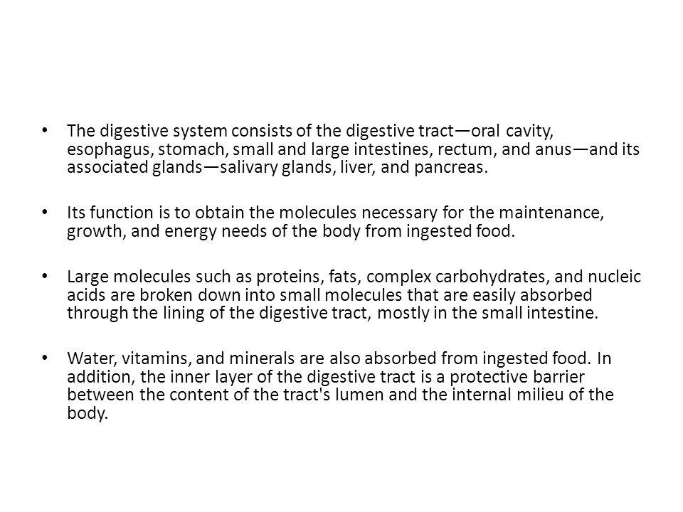 General Structure of the Digestive Tract The entire gastrointestinal tract presents certain common structural characteristics is a hollow tube composed of a lumen whose diameter varies, surrounded by a wall made up of four principal layers: the mucosa, submucosa, muscularis, and serosa.