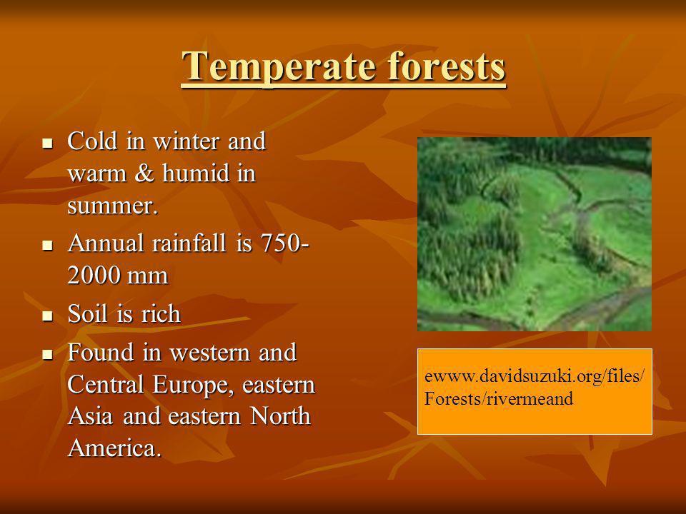 DESERT A desert is a landscape form or region that receives very little precipitation.