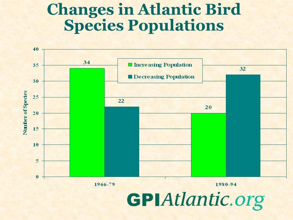 Changes in Atlantic Bird Species Populations