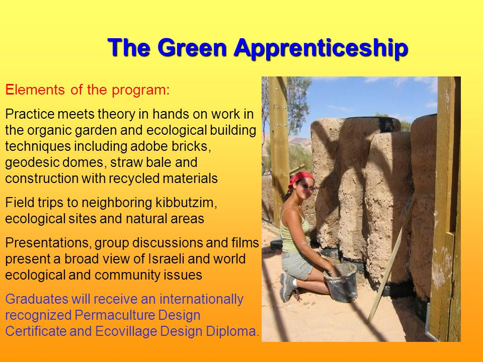 The Green Apprenticeship Elements of the program: Practice meets theory in hands on work in the organic garden and ecological building techniques including adobe bricks, geodesic domes, straw bale and construction with recycled materials Field trips to neighboring kibbutzim, ecological sites and natural areas Presentations, group discussions and films present a broad view of Israeli and world ecological and community issues Graduates will receive an internationally recognized Permaculture Design Certificate and Ecovillage Design Diploma.