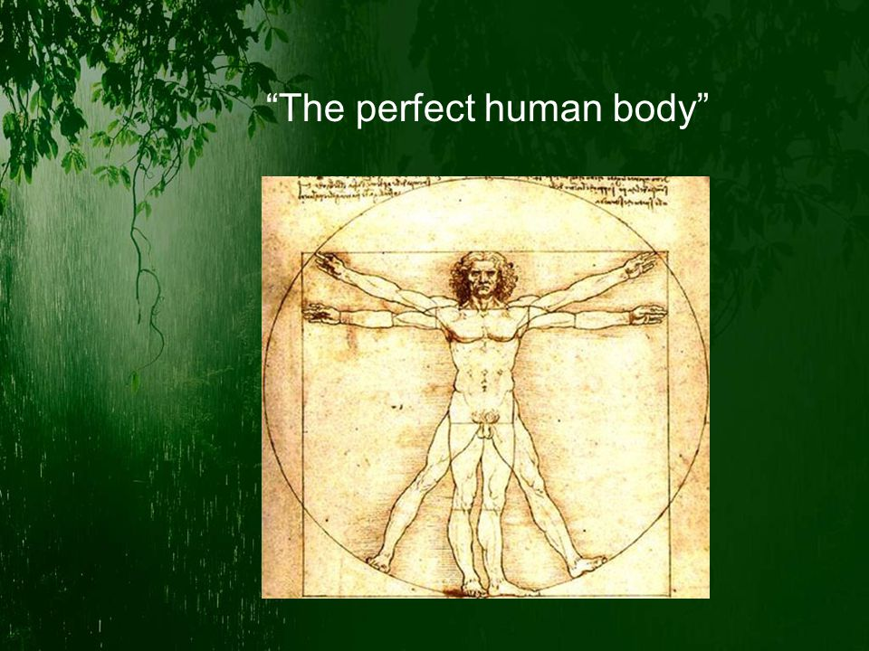 """The perfect human body"""