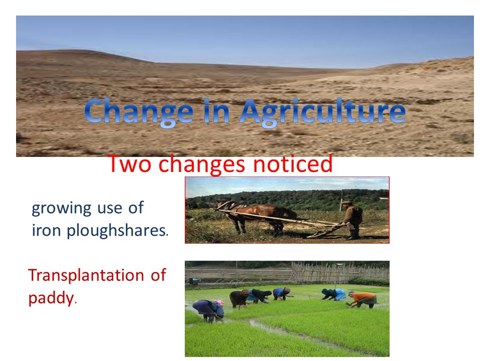 Two changes noticed growing use of iron ploughshares. Transplantation of paddy.