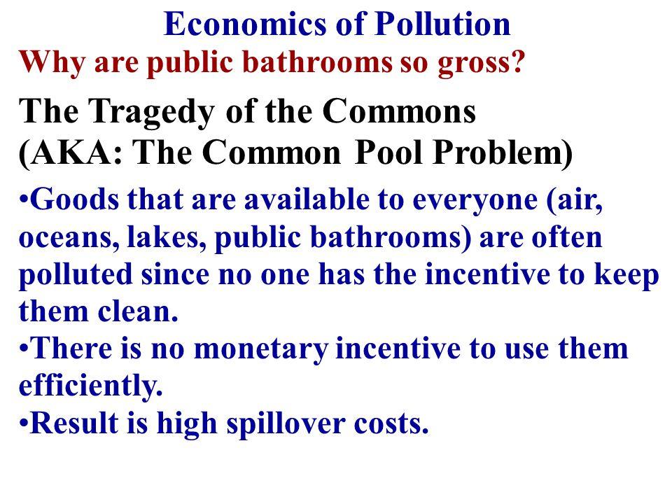 The Economics of Pollution