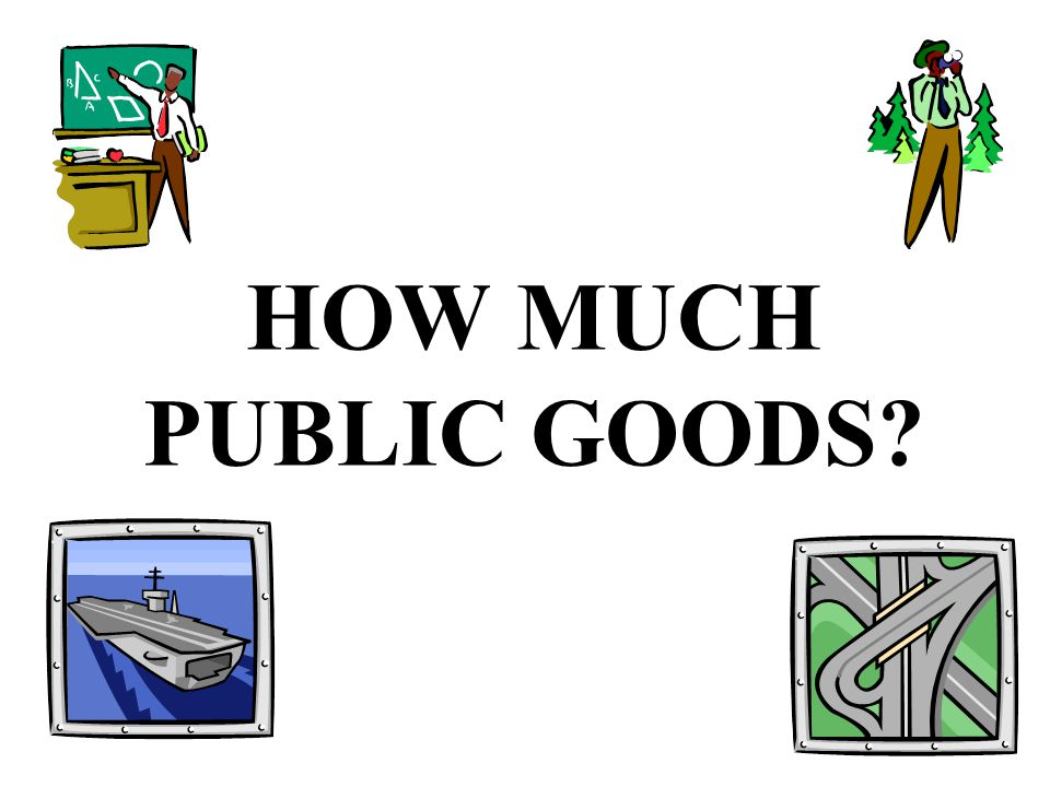 HOW MUCH PUBLIC GOODS?