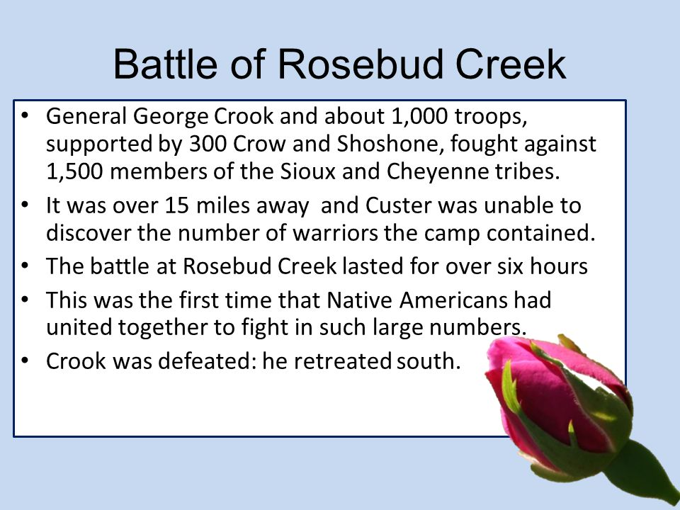 Battle of Rosebud Creek General George Crook and about 1,000 troops, supported by 300 Crow and Shoshone, fought against 1,500 members of the Sioux and