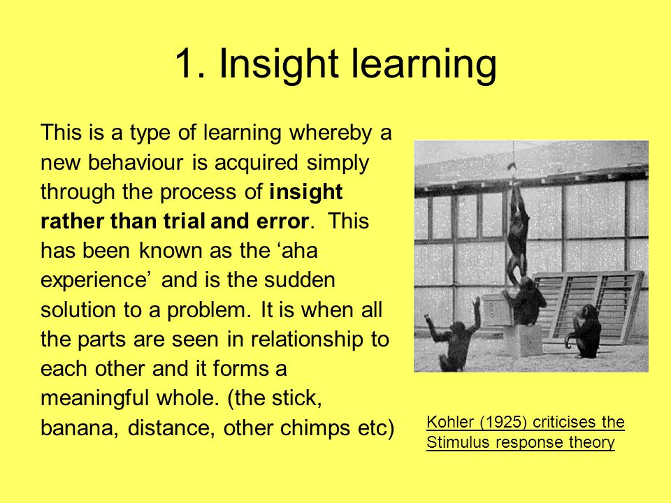 1. Insight learning This is a type of learning whereby a new behaviour is acquired simply through the process of insight rather than trial and error.