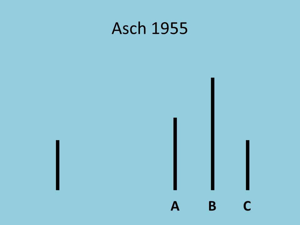 ACB Asch 1955