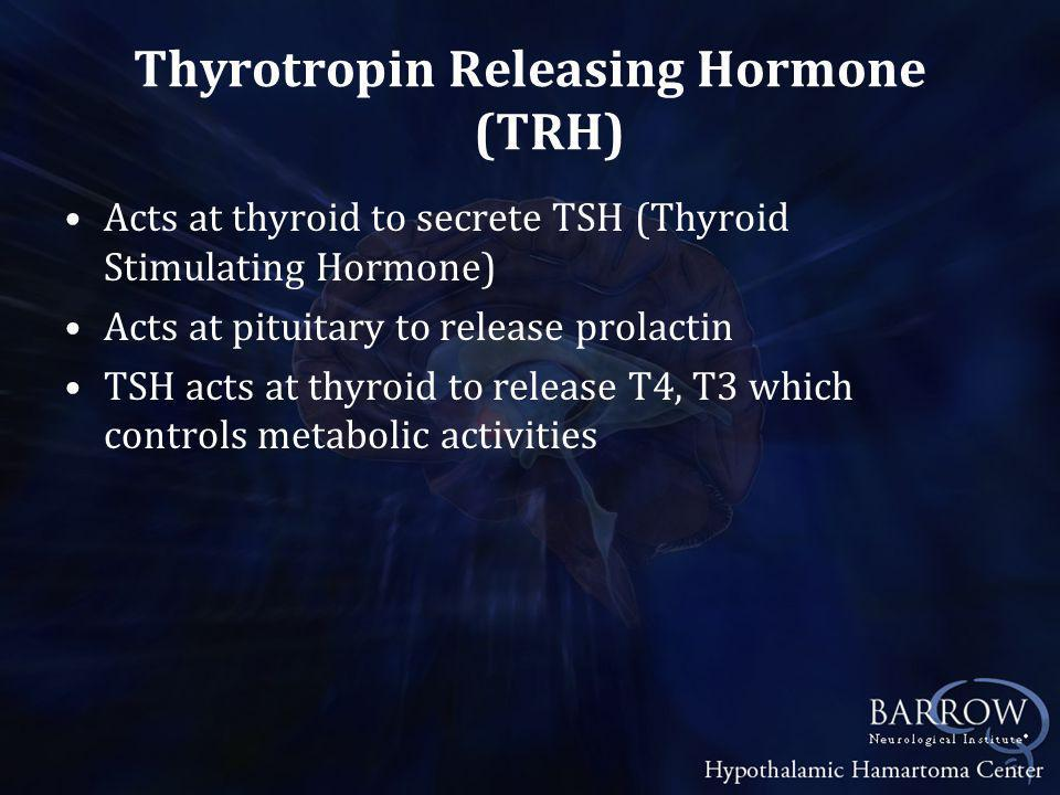 Thyrotropin Releasing Hormone (TRH) Acts at thyroid to secrete TSH (Thyroid Stimulating Hormone) Acts at pituitary to release prolactin TSH acts at thyroid to release T4, T3 which controls metabolic activities
