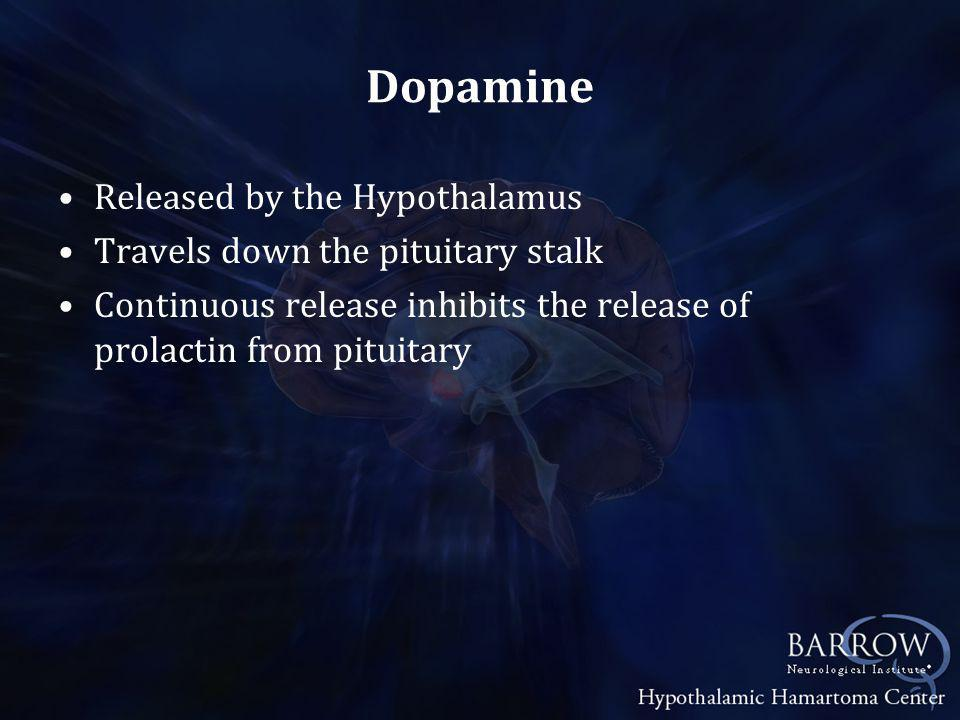 Dopamine Released by the Hypothalamus Travels down the pituitary stalk Continuous release inhibits the release of prolactin from pituitary
