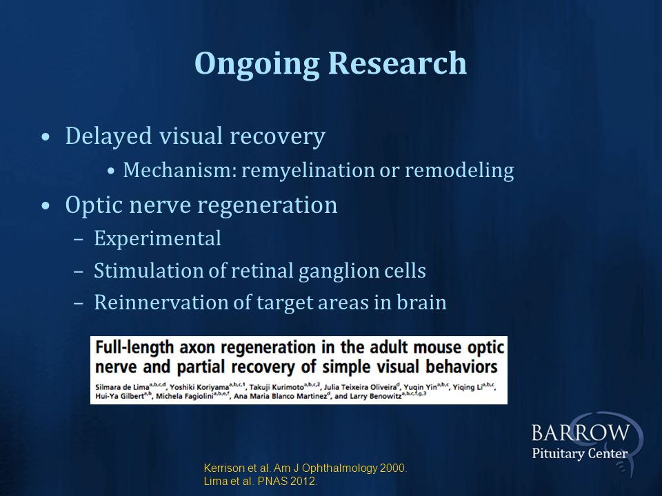 Ongoing Research Delayed visual recovery Mechanism: remyelination or remodeling Optic nerve regeneration –Experimental –Stimulation of retinal ganglion cells –Reinnervation of target areas in brain Kerrison et al.