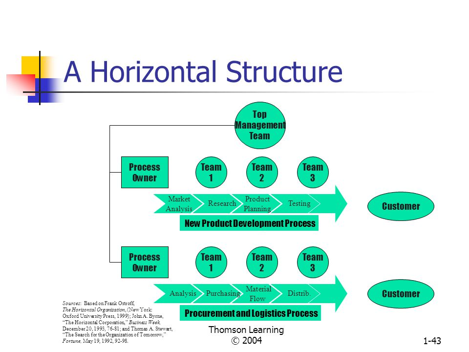 Thomson Learning © 20041-42 Matrix Structure for Worldwide Steel Company President Industrial Relations Vice President Mfg. Services Vice President Fi