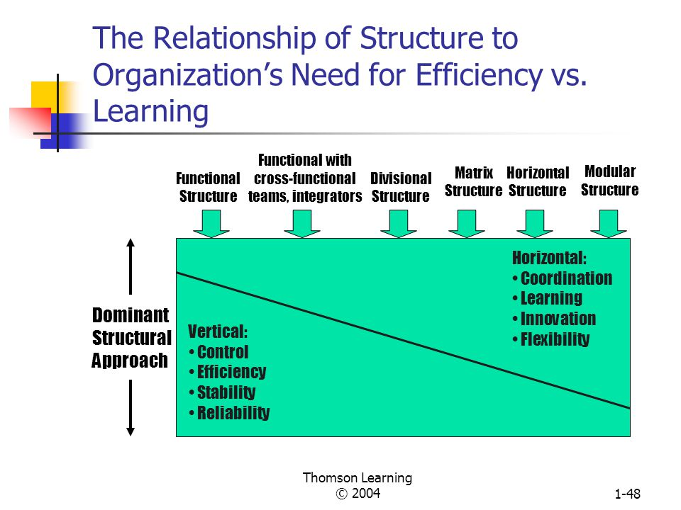 Thomson Learning © 20041-47 Organization Contextual Variables that Influence Structure Structure (learning vs.