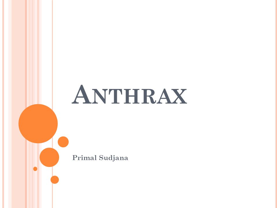A NTHRAX Primal Sudjana