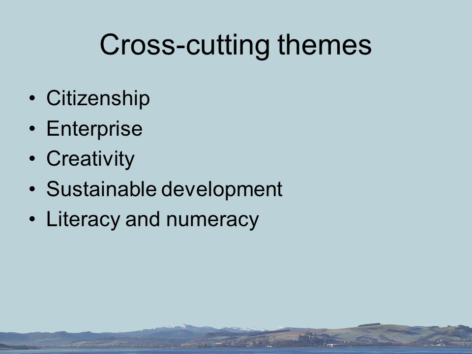 Cross-cutting themes Citizenship Enterprise Creativity Sustainable development Literacy and numeracy