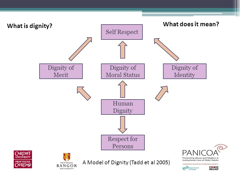 Self Respect Dignity of Merit Dignity of Moral Status Dignity of Identity Human Dignity Respect for Persons A Model of Dignity (Tadd et al 2005) What is dignity.