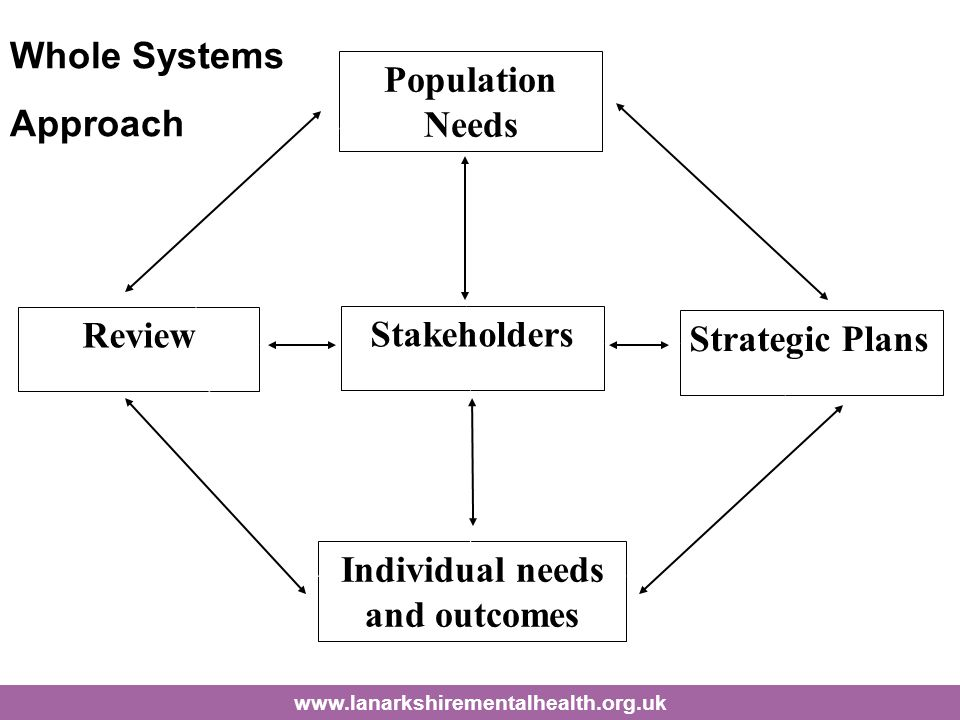 Stakeholders Population Needs Individual needs and outcomes Strategic Plans Review Whole Systems Approach