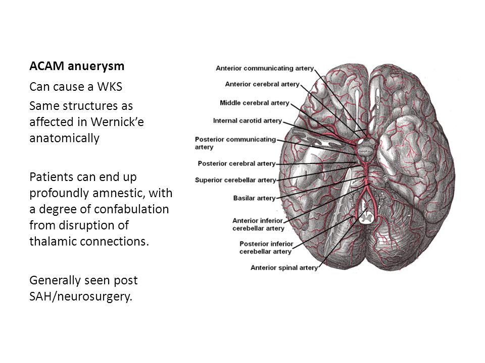 ACAM anuerysm Can cause a WKS Same structures as affected in Wernick'e anatomically Patients can end up profoundly amnestic, with a degree of confabul