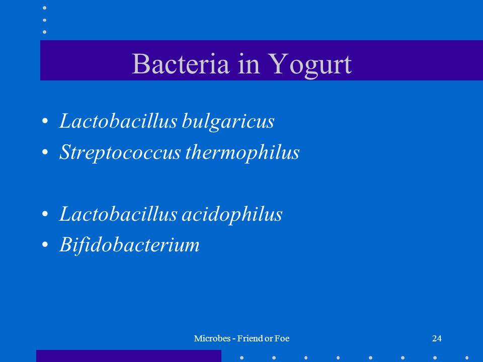 Microbes - Friend or Foe24 Bacteria in Yogurt Lactobacillus bulgaricus Streptococcus thermophilus Lactobacillus acidophilus Bifidobacterium