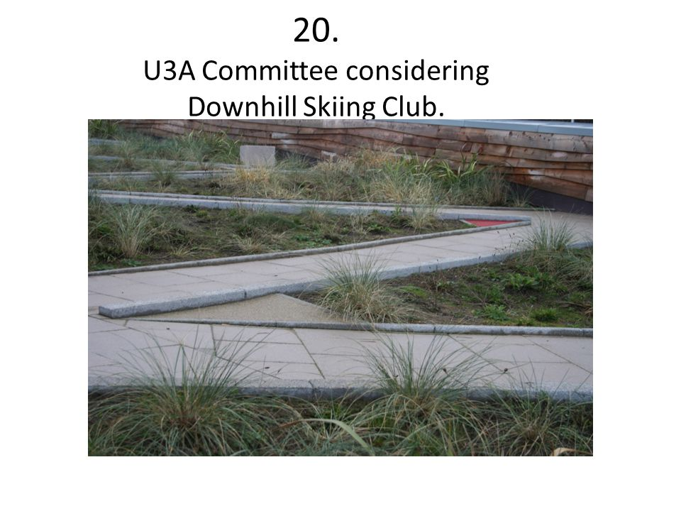 20. U3A Committee considering Downhill Skiing Club.