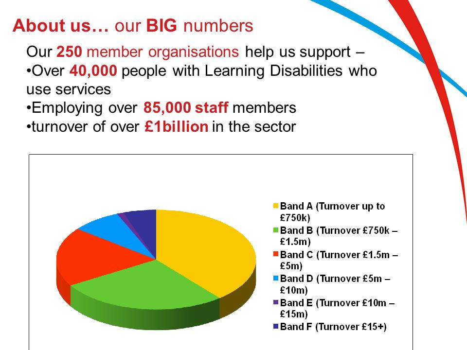 About us… our BIG numbers Our 250 member organisations help us support – Over 40,000 people with Learning Disabilities who use services Employing over
