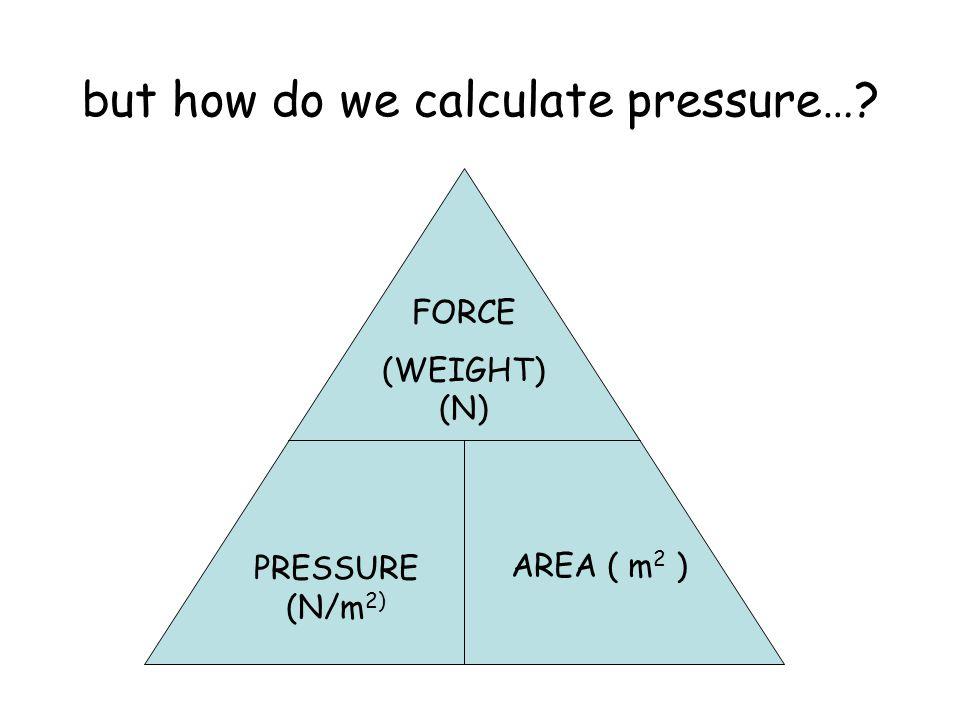 but how do we calculate pressure…? FORCE (WEIGHT) (N) PRESSURE (N/m 2) AREA ( m 2 )