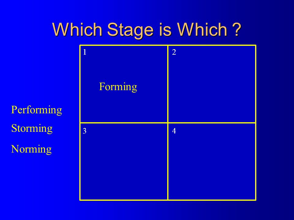 Which Stage is Which ? 1 2 34 Norming Performing Forming Storming