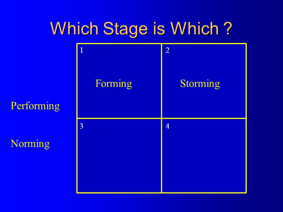Which Stage is Which ? 1 2 34 Norming Performing FormingStorming