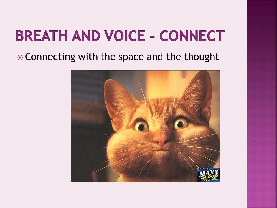  Body cavities act as resonators  Sinuses  Chest  Bones…  PITCH….