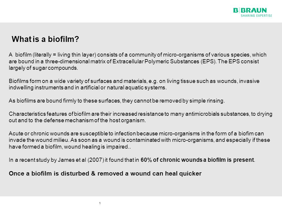 2 The formation of a biofilm takes place in several phases
