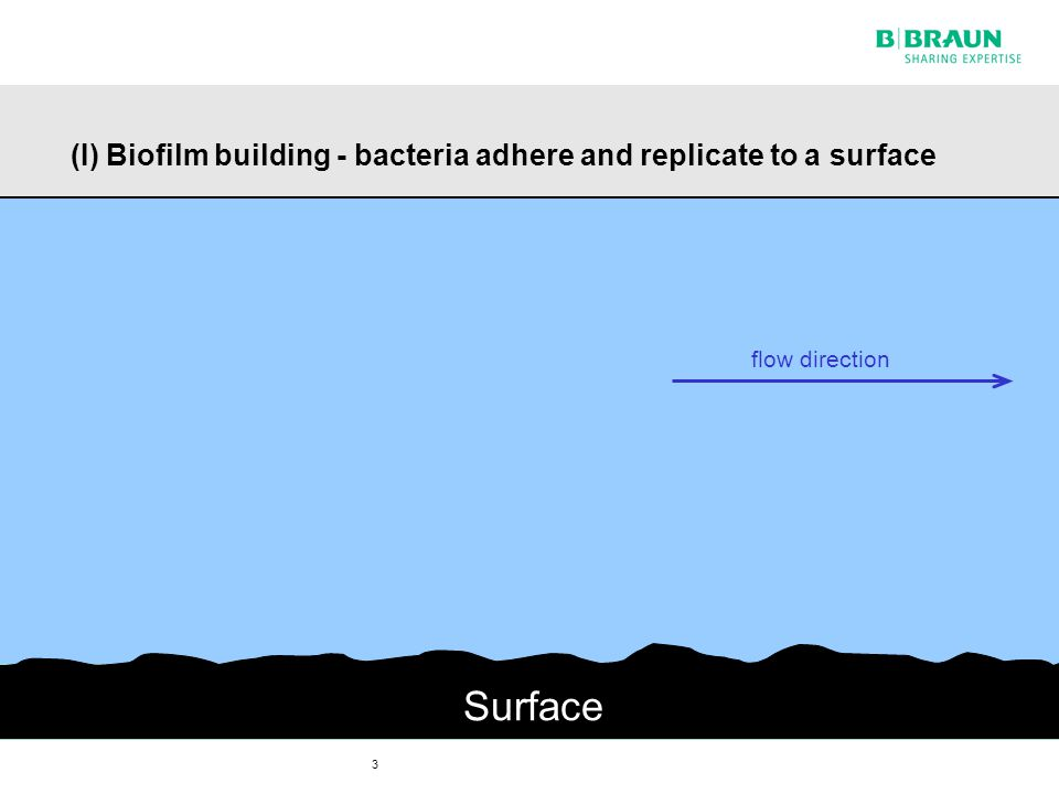 3 (I) Biofilm building - bacteria adhere and replicate to a surface Surface flow direction