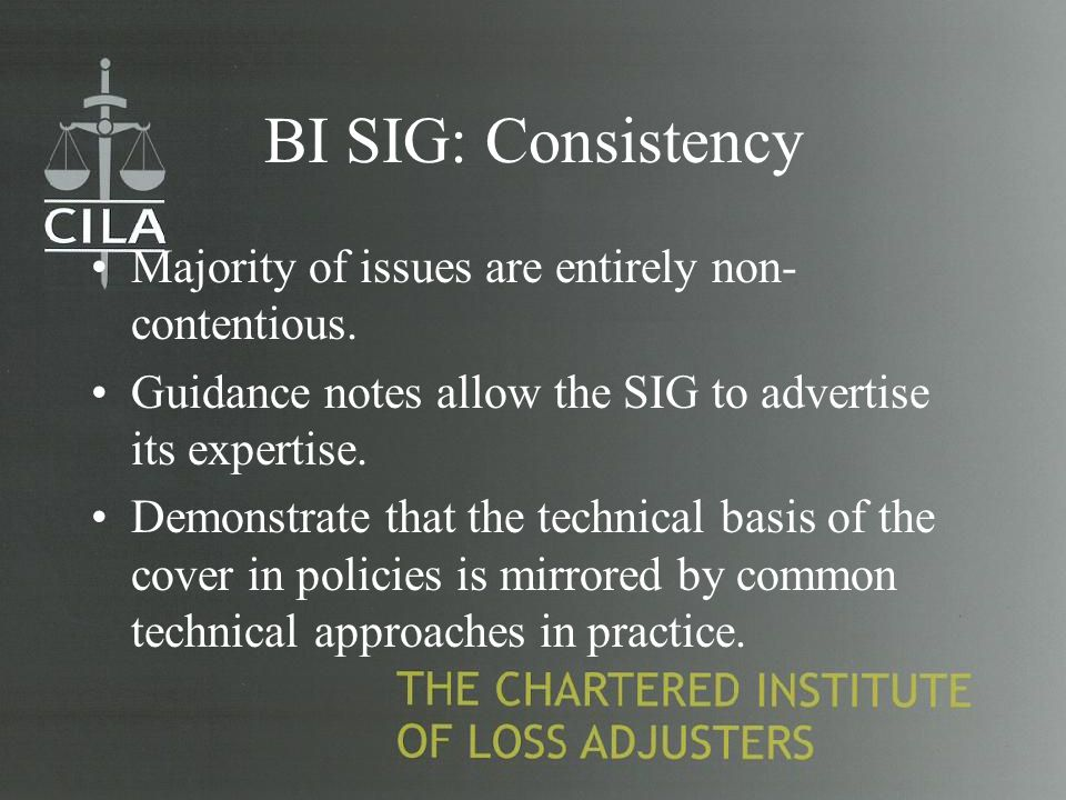 BI SIG: Consistency Majority of issues are entirely non- contentious.