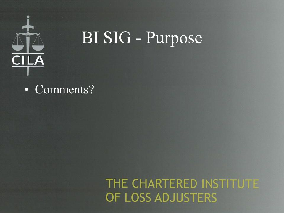BI SIG - Purpose Comments