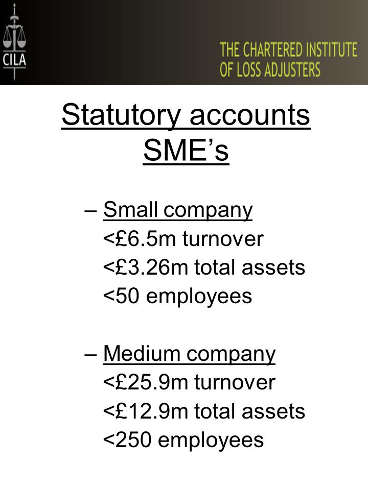 Statutory accounts SME's –Small company <£6.5m turnover <£3.26m total assets <50 employees –Medium company <£25.9m turnover <£12.9m total assets <250 employees