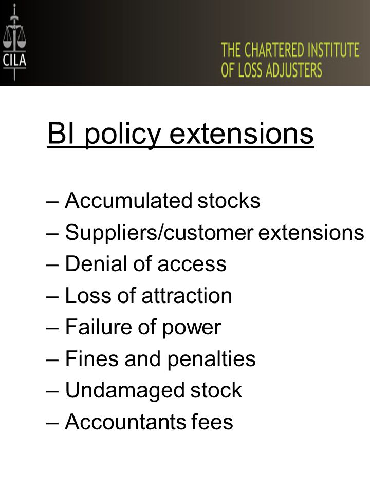 BI policy extensions –Accumulated stocks –Suppliers/customer extensions –Denial of access –Loss of attraction –Failure of power –Fines and penalties –