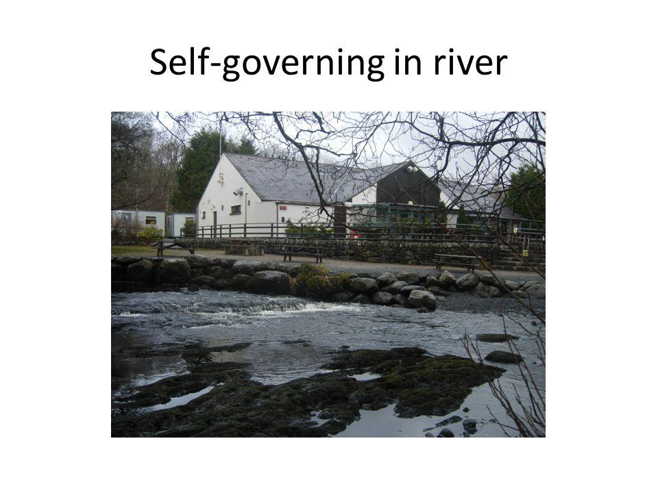 Self-governing in river