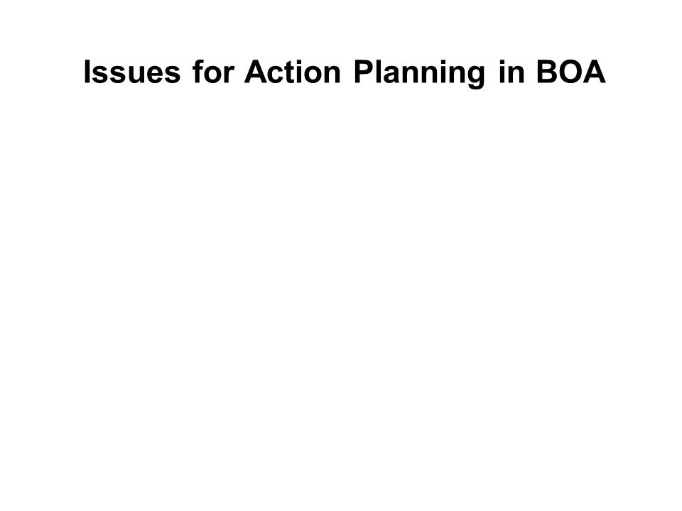 Issues for Action Planning in BOA