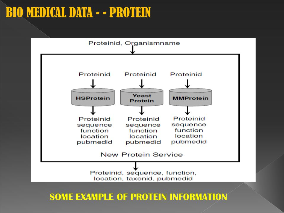 BIO MEDICAL DATA - - PROTEIN BIO MEDICAL DATA - - PROTEIN SOME EXAMPLE OF PROTEIN INFORMATION