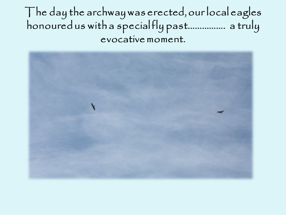 The day the archway was erected, our local eagles honoured us with a special fly past…………….